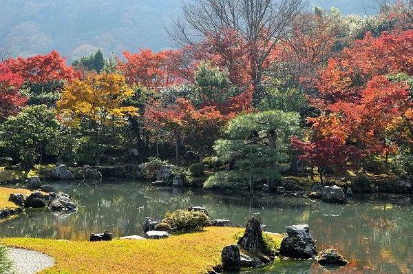 Mùa thu - mùa của lá phong đỏ