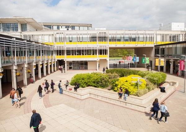 Trường Đại học Essex