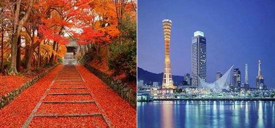 Cây lá đỏ và Thành phố Kobe nơi Fist Study án ngữ