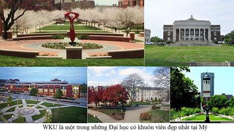 Đại học Western Kentucky