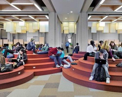 Sinh viên tại đại học York