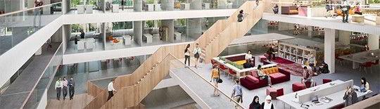 Hình ảnh bên trong trường Rotterdam Business School