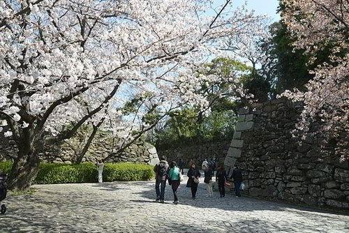 Du học Nhật Bản tại Học viện FLA ở thành phổ Fukuoka