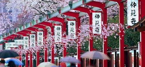 Điều kiện du học Nhật Bản là gì?