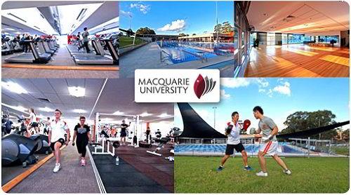 Các hoạt động của sinh viên trường Macquarie University