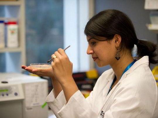 Nhiều chuyên ngành hấp dẫn để sinh viên du học Úc ngành dược có thể lựa chọn