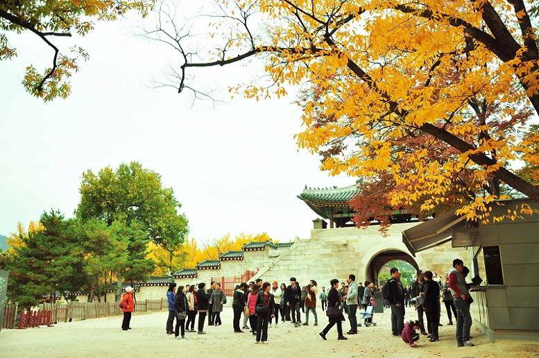 Điều Kiện Du Học Hàn Quốc Những Điều Bạn Cần Biết