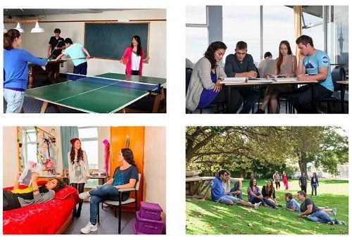 Sinh hoạt ở đại học Auckland