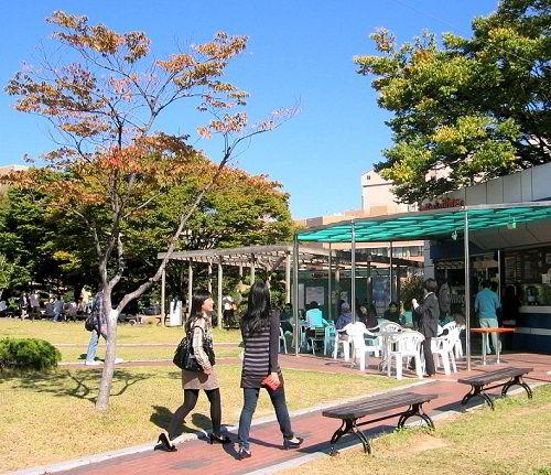 Nhiều sinh viên quốc tế lựa chọn Đại học Quốc gia Pusan khi du học Hàn Quốc