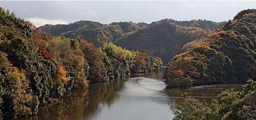 Thiên nhiên thành phố Chiba - Vị trí của trường Nhật ngữ Makuhari
