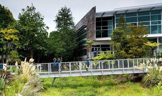 Trường Kristin hay Trường Tú Tài Quốc Tế Kristin (Kristen IB World School)