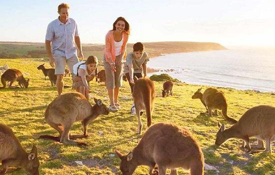Địa lý và khí hậu Úc