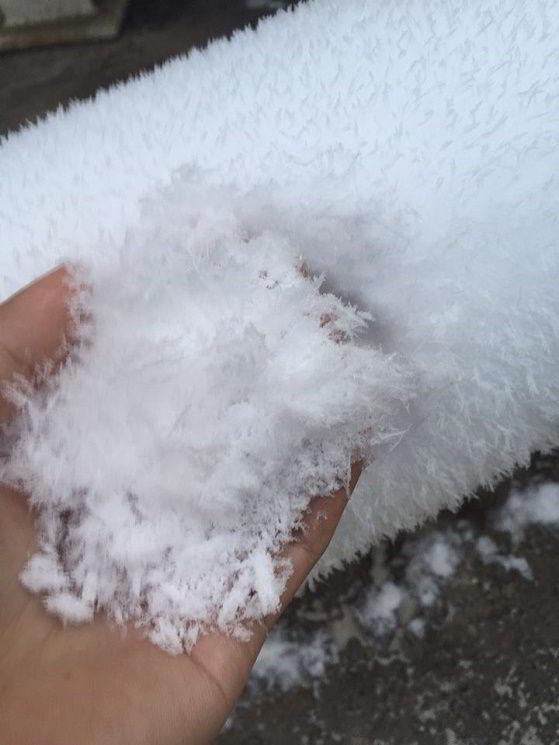 Hình ảnh của bạn Nguyễn Đức Anh – Du học sinh New Ocean khi lần đầu tiên chạm tay vào tuyết