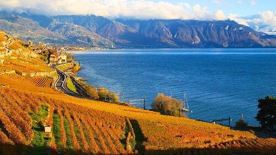 Mùa thu ngập lá vàng tại Thụy Sĩ