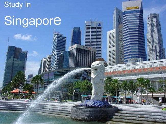 Săn học bổng toàn phần du học Singapore, 5 bước cần phải chuẩn bị