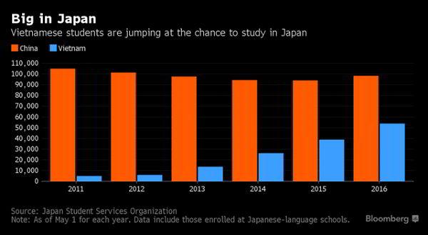 Số du học sinh Việt Nam tại Nhật Bản tăng nhanh, chỉ đứng sau Trung Quốc