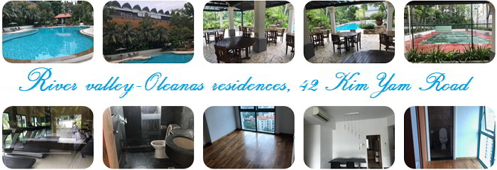 River valley Address: Oleanas residences, 42 Kim Yam Road (Near Somerset MRT)