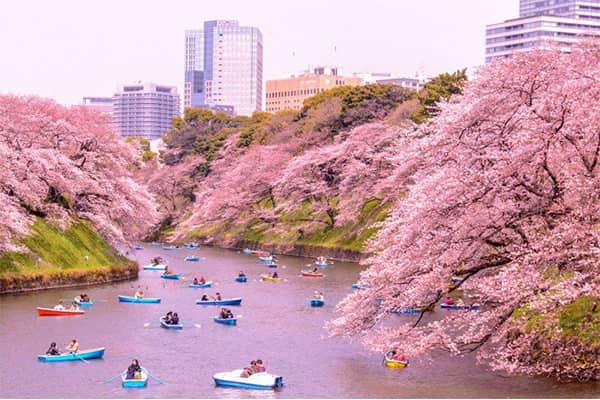 Đất nước Nhật Bản xinh đẹp