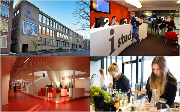 Ngành quản trị du lịch – khách sạn tại Đại học Stenden