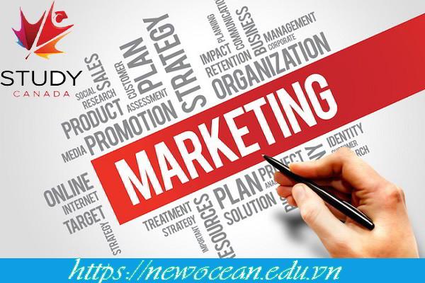 Du học Canada ngành Marketing có nên hay không?