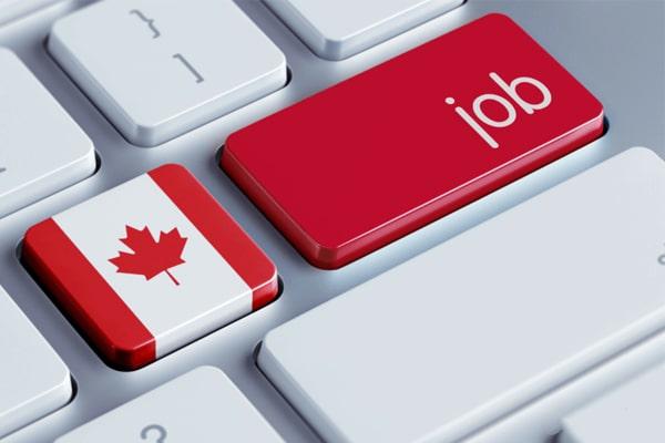 Rất nhiều ngành nghề ở Canada đang thiếu hụt nhân lực