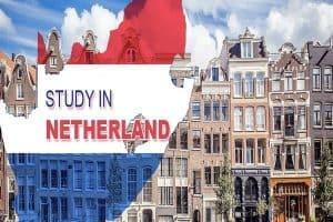 Học quản trị kinh doanh tại Hà Lan. Cơ hội nhận mức lương khủng