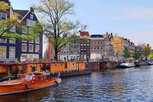 Những ngành học hot nhất khi du học Hà Lan 2021